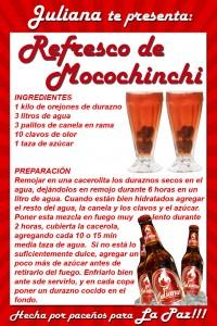 2 RECETA REFRESCO DE MOCOCHINCHI